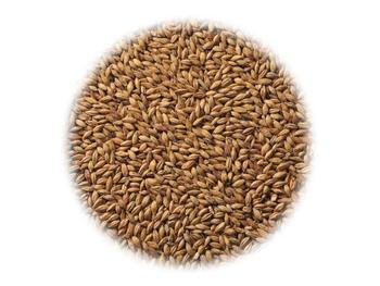 Солод Viking Malt Lightly Peated (Копченый)